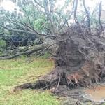 Storms soak, pound Robeson