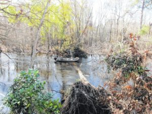 Robeson County's outdoor facilities bounce back in wake of Hurricane Matthew flooding